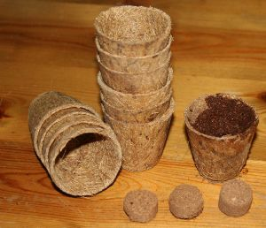10 small coir pots and compost
